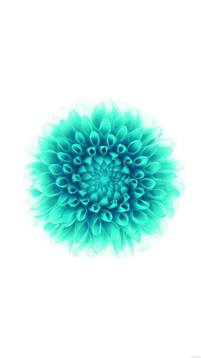 iOS8 green flower